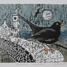 Blackbird Porthleven - Louisa Ellis